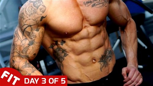 Day 3 - Abs - Ross Dickerson's 5 Day Split