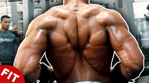 World's Best Back Workout