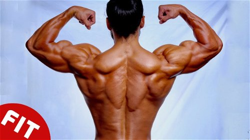 Train Smart For The Perfect Back