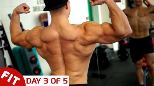 Day 3 - Back - Mike Thurston's 5 Day Split