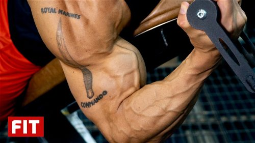 Precision Workout for Massive Arms