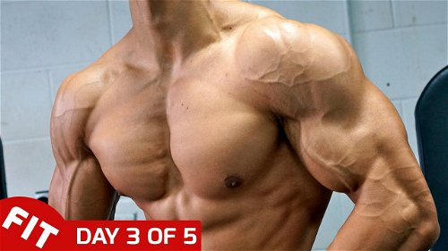Day 3 - Shoulders with Andrei Deiu