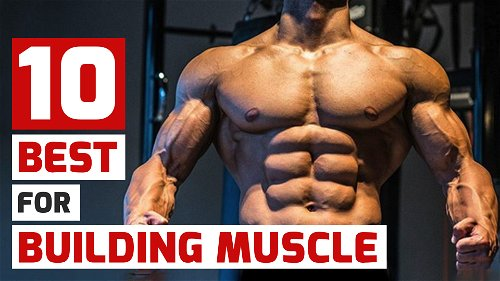 10 Best Exercises for Building Muscle